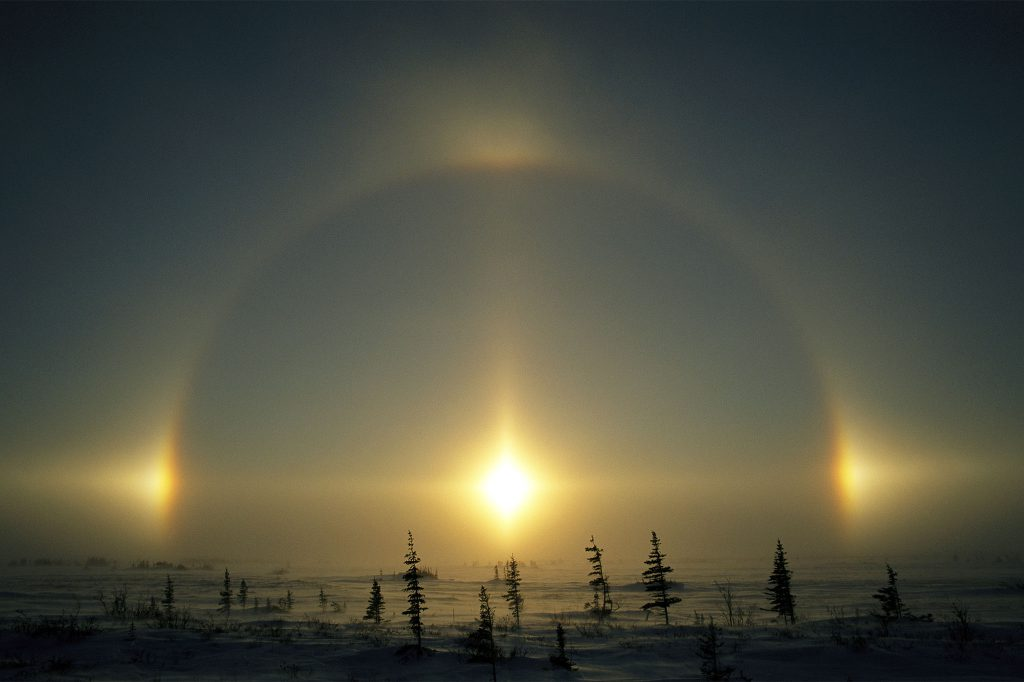 Sunlight and solar phenomena over a snowy landscape with evergreens.